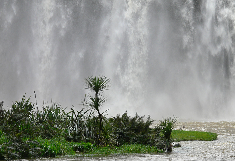 Waterfall, Whangarai