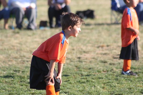Orange Crush 2008