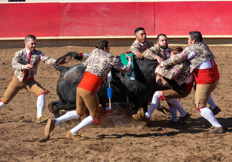 bullfights2018-011.jpg