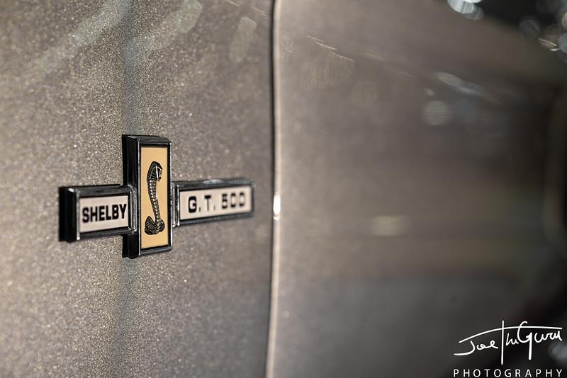Eleanore Mustang-4016.jpg