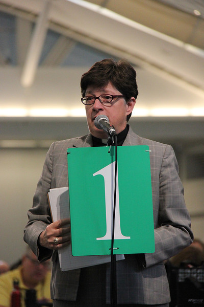 The Rev. Elizabeth A. Eaton, bishop-elect, speaks in favor of the 25th Anniversary Campaign for the ELCA.