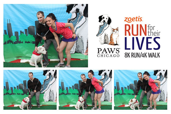 PAWS Chicago Run For Their Lives June 9, 2013