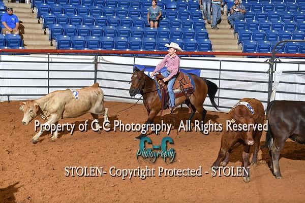 Top 10 RSNC Finals 2018 Fort Worth TX