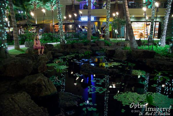 JANUARY, 2013:  HAWAII I
