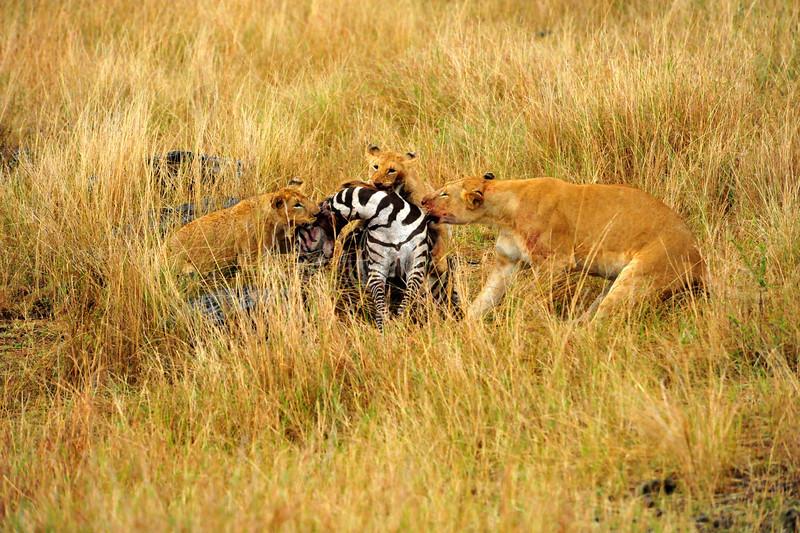 Africa 2010-126.JPG