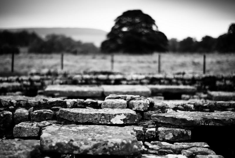 Chesters Roman fort (Cilurnum), 2008