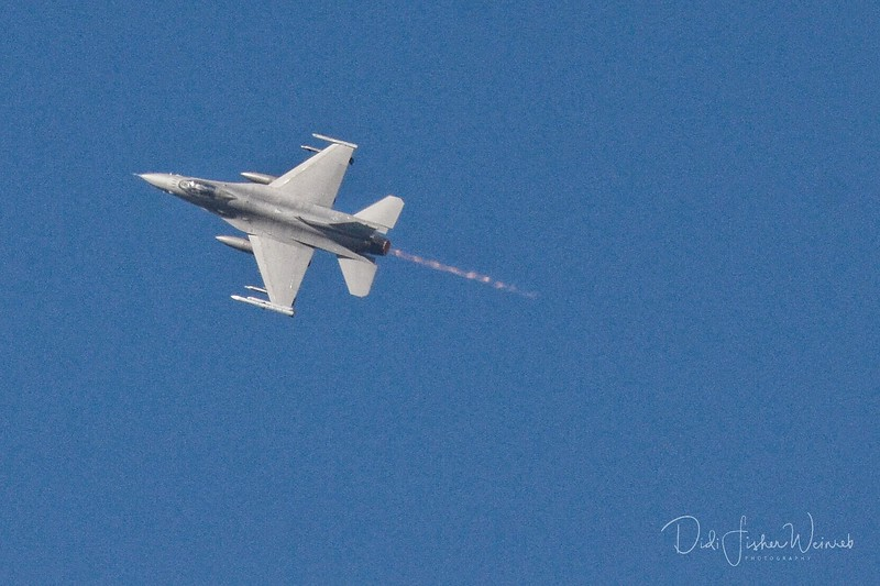 F1403D56-9B0F-4BB5-9D0F-F0B4FD1B2F3E.jpeg