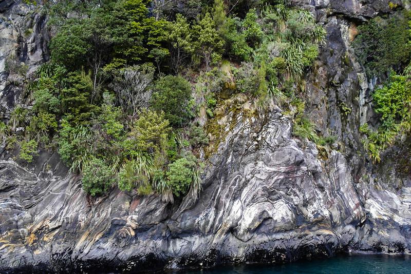 Nieuw_Zeeland_12_Dimitri_Belfiore.jpg