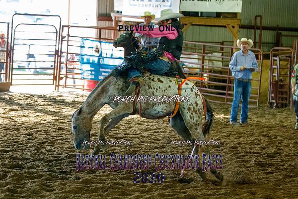 Junior Bronc Riding