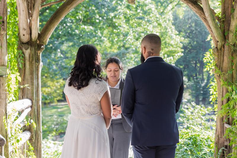 Central Park Wedding - Nusreen & Marc Andrew-85.jpg