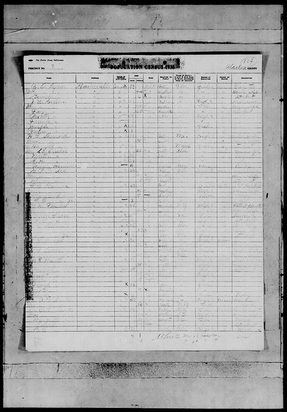 1935 florida census- Gainesville ZO Lynn family.jpg