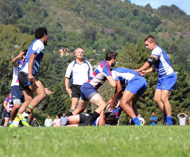 sharks-rugby7s-facebook-photos-1 (11).jpg