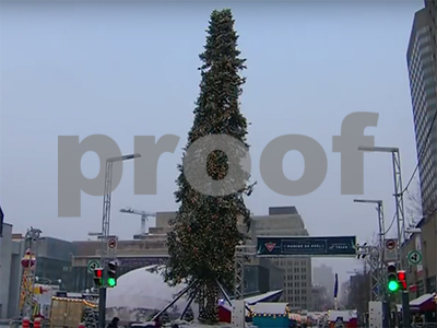 montreals-ugly-christmas-tree-gains-worldwide-fame