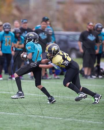 ThunderHawks 7th Grade vs North Metro