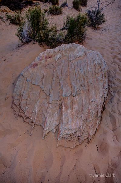Organic Rock? Acid rain? Valley of Fire, Nevada