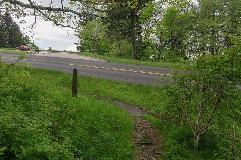 Rough Butt Bald Overlook-MST Access Trail @ Blue Ridge Parkway -- 5,380'
