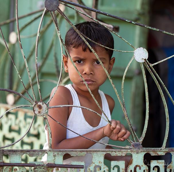 20111119_delwara_7353.jpg