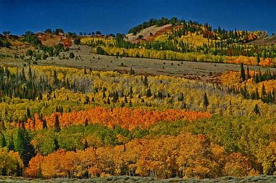 North Central Colorado