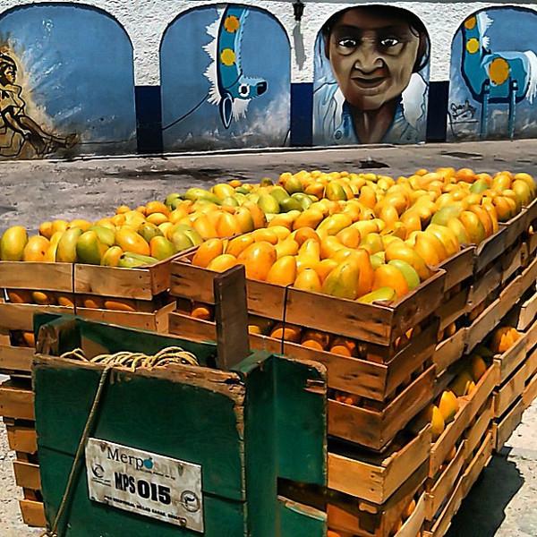 Mango harvest cart meets #streetart - San Cristobal #Chiapas #Mexico