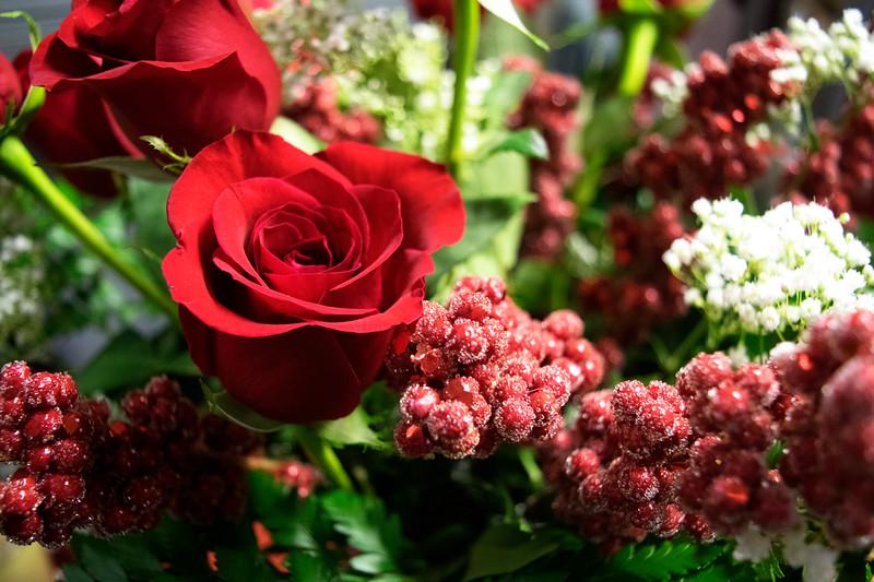 ValentinesDayRoses2.jpg