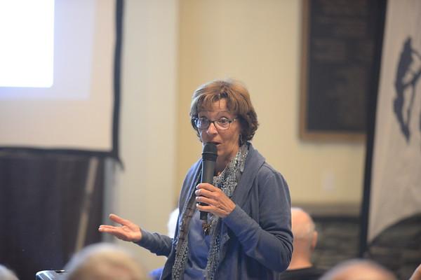 11-12-18: DMF Talks Susan Kurtik
