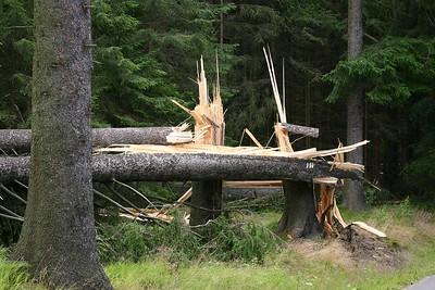 Sturm im Erzgebirge - 29.07.2005