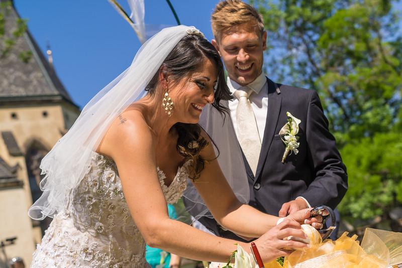 Jana & Aleš Wedding (20150604-140654).jpg
