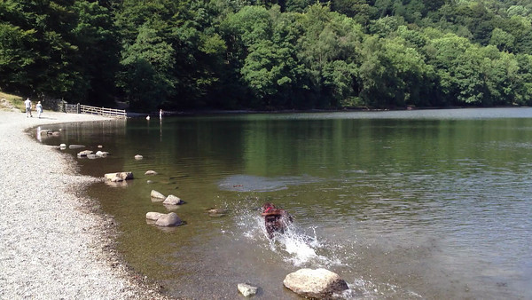 Ellie 2013-0720 - The coolest thing to do on the hottest day! Video