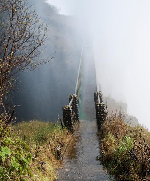 Victoria Falls (6).jpg
