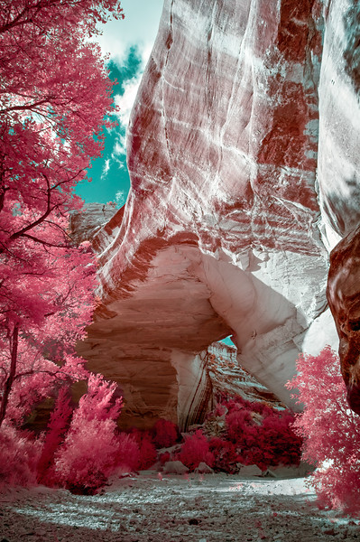 Infrared / Infrared Landscapes and Nature / Utah