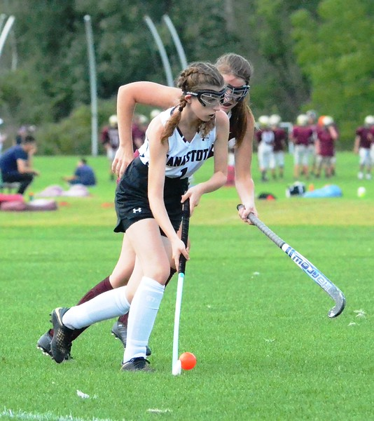 FH Stota vs. Clinton 6 9-5-18.JPG