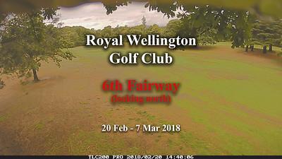 Feb 18 - RWGC 6th fairway growth