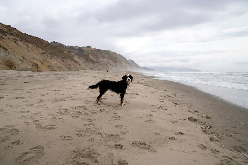 ocean beach quarantine 1224005-30-20.jpg