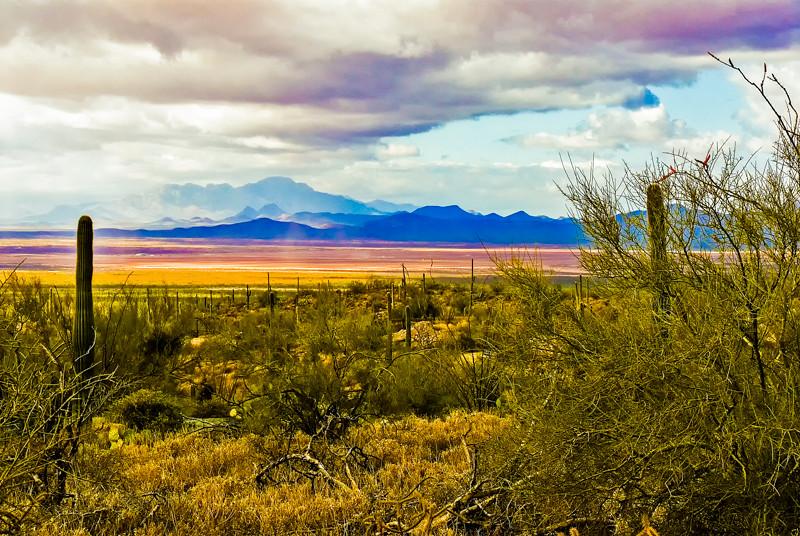 Arizona Scenics-2.jpg