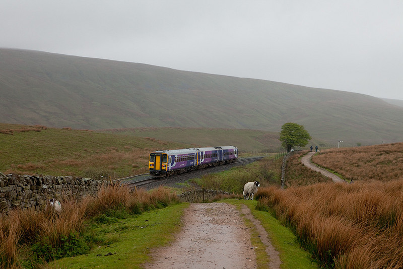 158 791 between Ribblehead and Blea Moor bound for Carlisle.