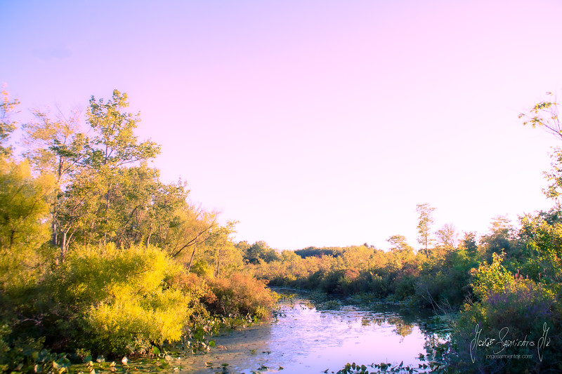 river-new-jersey-jorge-sarmiento-photography-video-IMG_7001.jpg