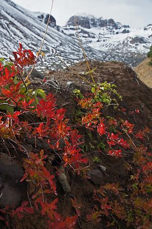 Glacier Basin Oct 2011