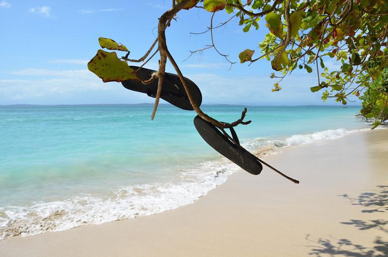 Bocas del Toro Boat Tour 38.jpg