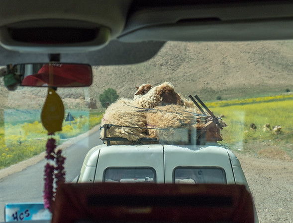 Morocco From the Road