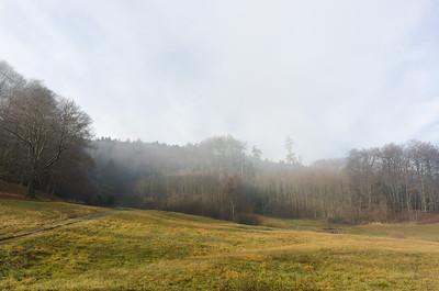 2015-12-15 Foggy morning