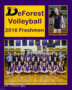 Volleyball 2016 Freshmen