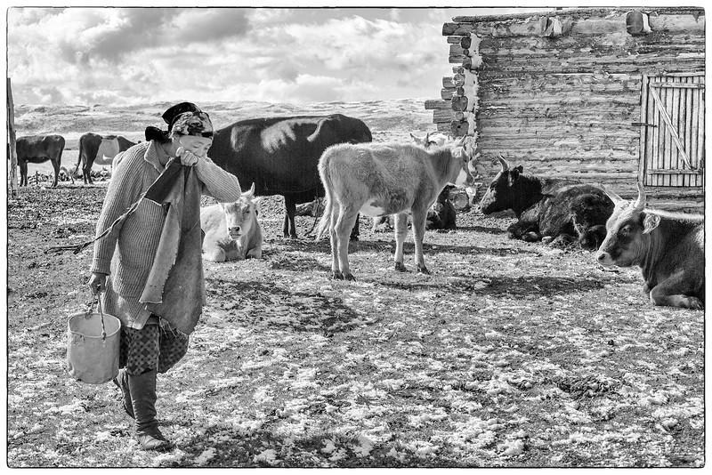 Mongolia_20150706_5D38426-copy.jpg