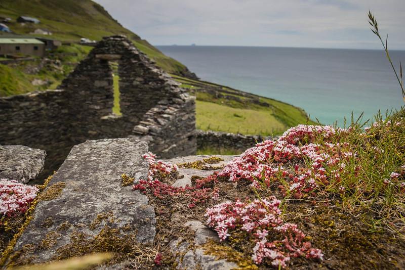 ruined houses on Ireland coast