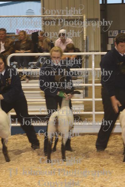 2010 Spring Branch FFA Lamb