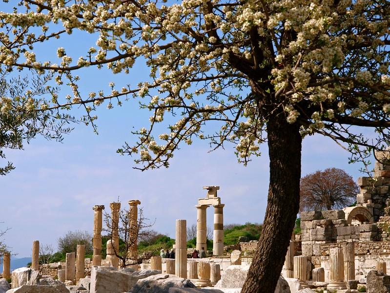 Efeze 24-03-09 (72).jpg