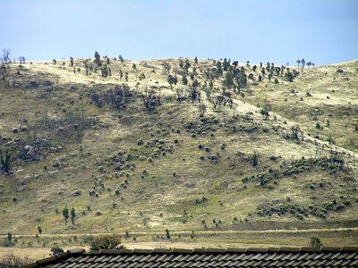 Mount Taylor January 2005