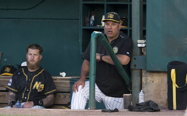The New Britain Bees vs the High Point Rockers at New Britain Stadium on Thursday, August 15, 2019. Manager Mauro Gozzo. Wesley Bunnell | Staff