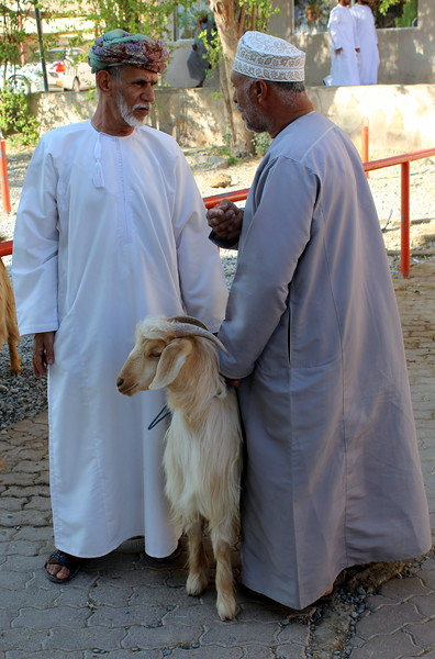 Cattle and goat market, Nizwa, Oman – Josef Rokus