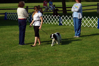 2008 Obedience and Showmanship