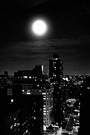 New York Noir - Too